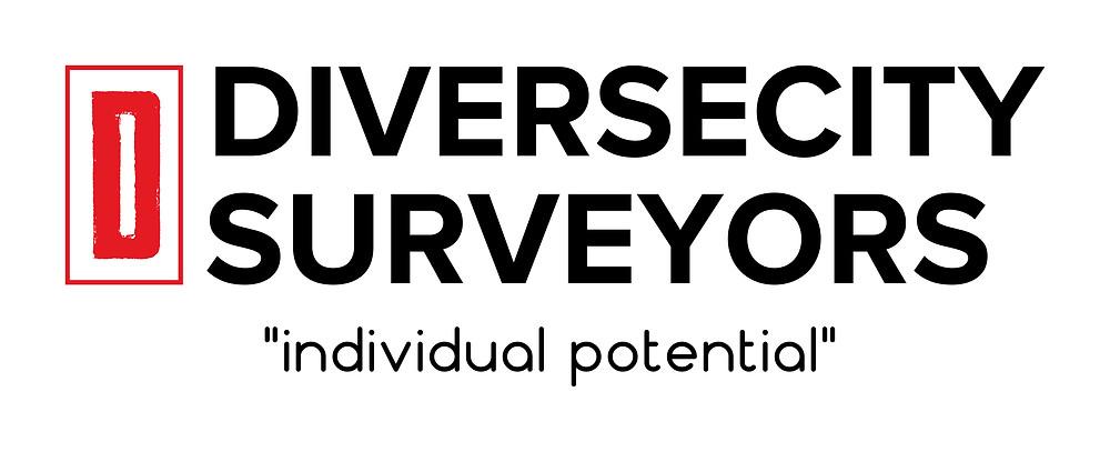 DiverseCity Surveyors - 2017 Logo