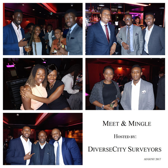 DiverseCity Surveyors' - Meet & Mingle, August 2017