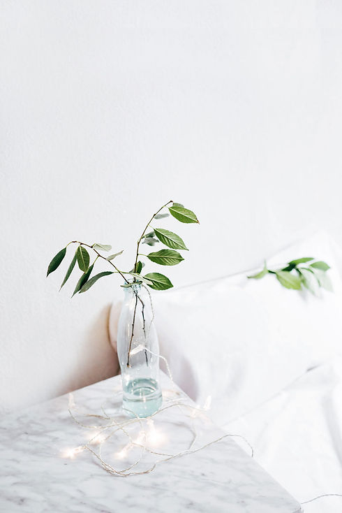 green plants in bottle in bedroom