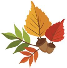 leaf .png