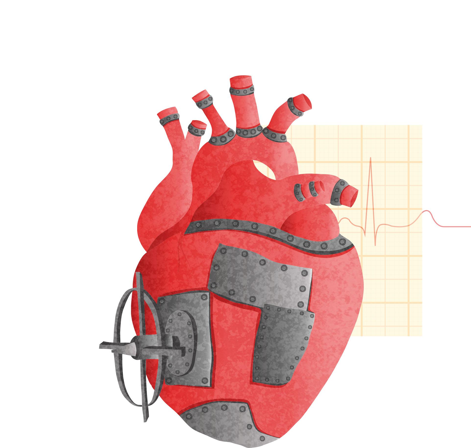 Mechanic of the heart