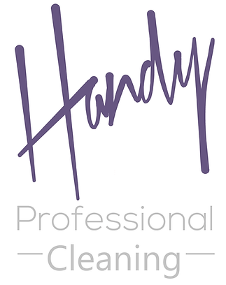 Handy Pro Cleaning Logo Sign Writing.png