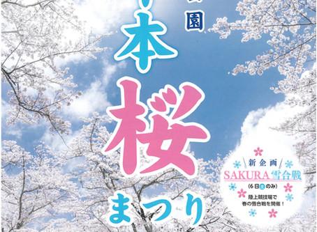 舎人公園千本桜まつりに出店します。