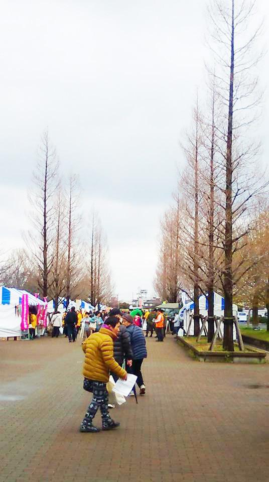 舎人公園千本桜まつり2017