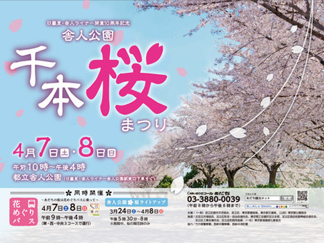 「舎人公園千本桜まつり」に出店します