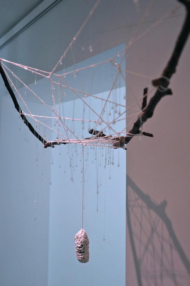 tzu.fen.lin_fiberart_spiderweb_27.jpg