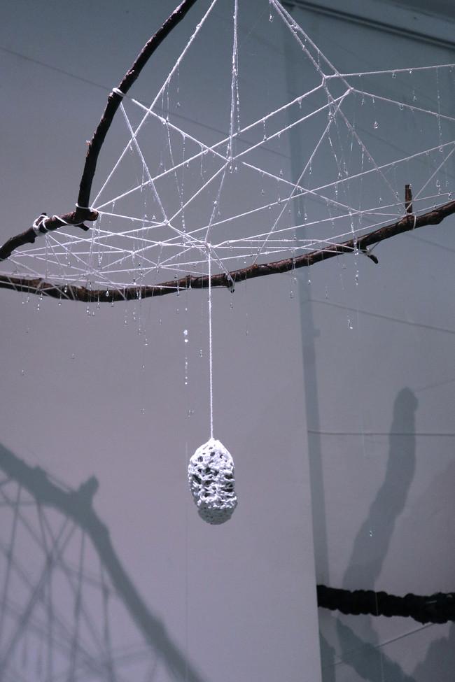 tzu.fen.lin_fiberart_spiderweb_33.jpg