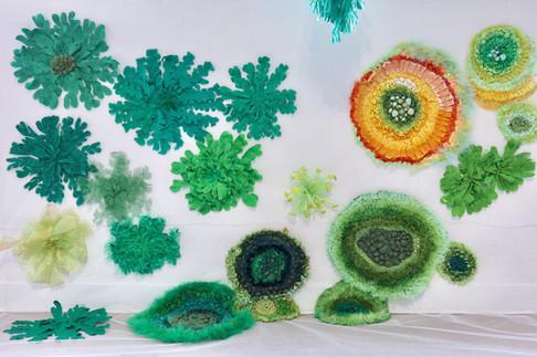 Lichenscapes