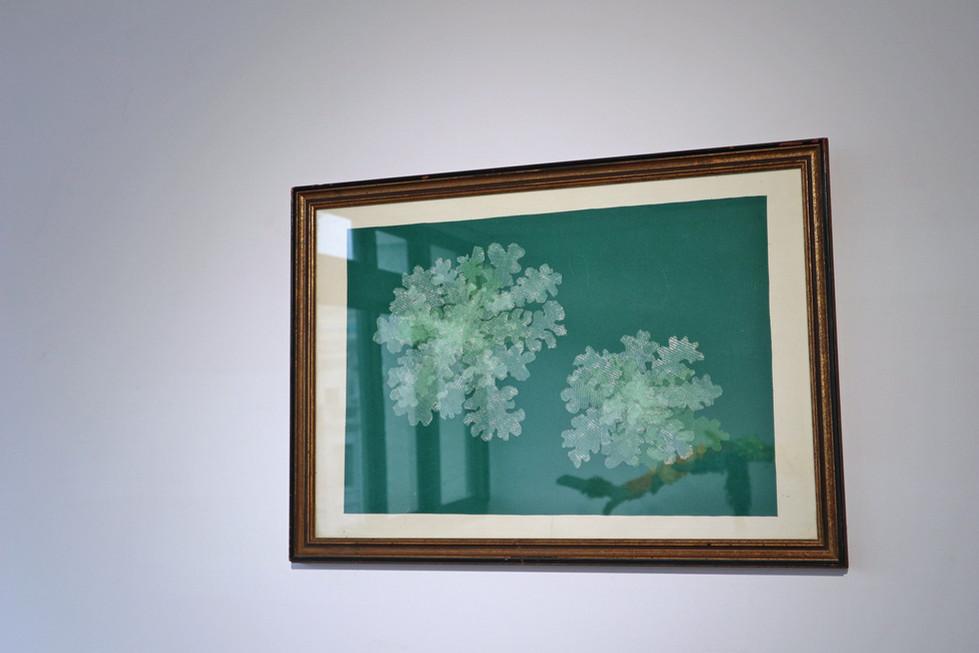 tzu.fen.lin_fiberart_lichenscapes_frame_