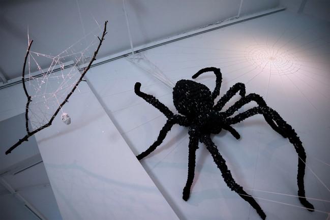 tzu.fen.lin_fiberart_spiderweb_20.jpg