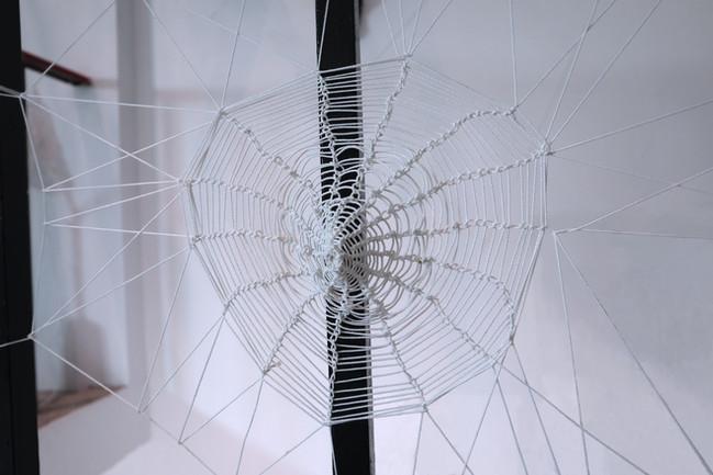tzu.fen.lin_fiberart_spiderweb_11.jpg