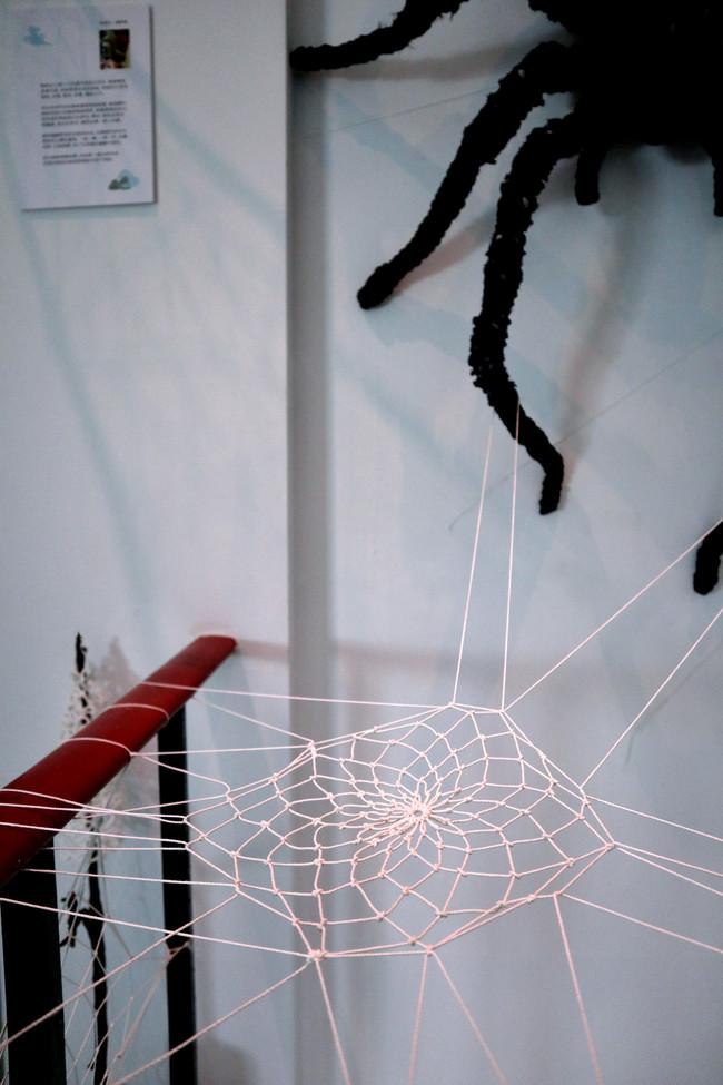 tzu.fen.lin_fiberart_spiderweb_3.jpg