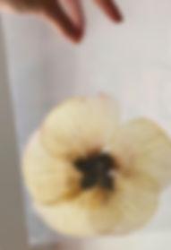 Dried-Flowers_edited.jpg