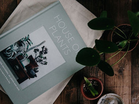 HOUSE of PLANTS BOOK RELEASE