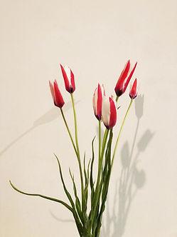 floral-design-munich.jpg