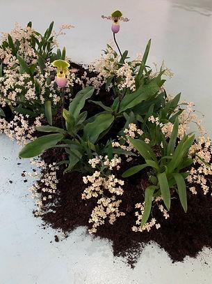 floral-installation-forma.jpg