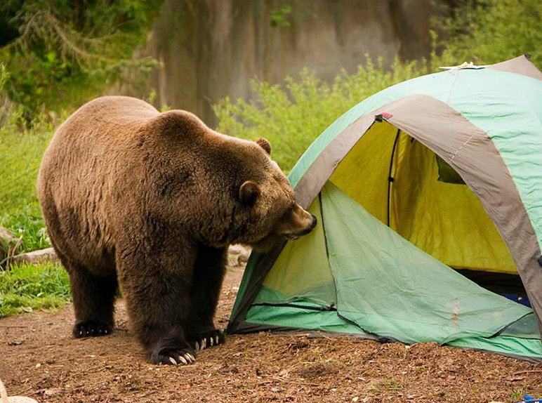 ours camping.jpg