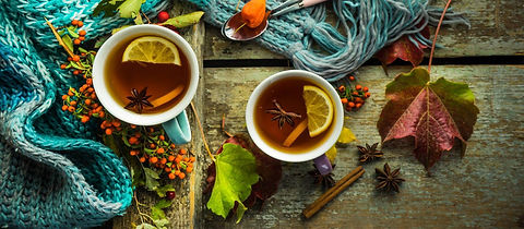 Herbal-Medicines-for-Fall-and-Winter.jpg