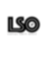 lso_logo.png