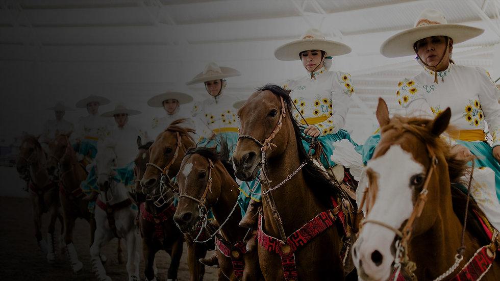 Cabal_Story_Horses.jpg