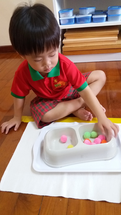 Montessori: Transferring Activity