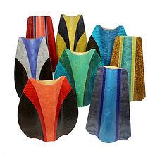 selection of xylem vessels.jpg