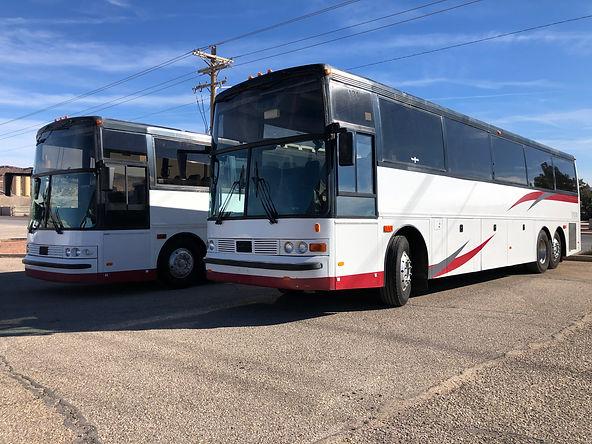 55 pax buses Amore Transport.jpg
