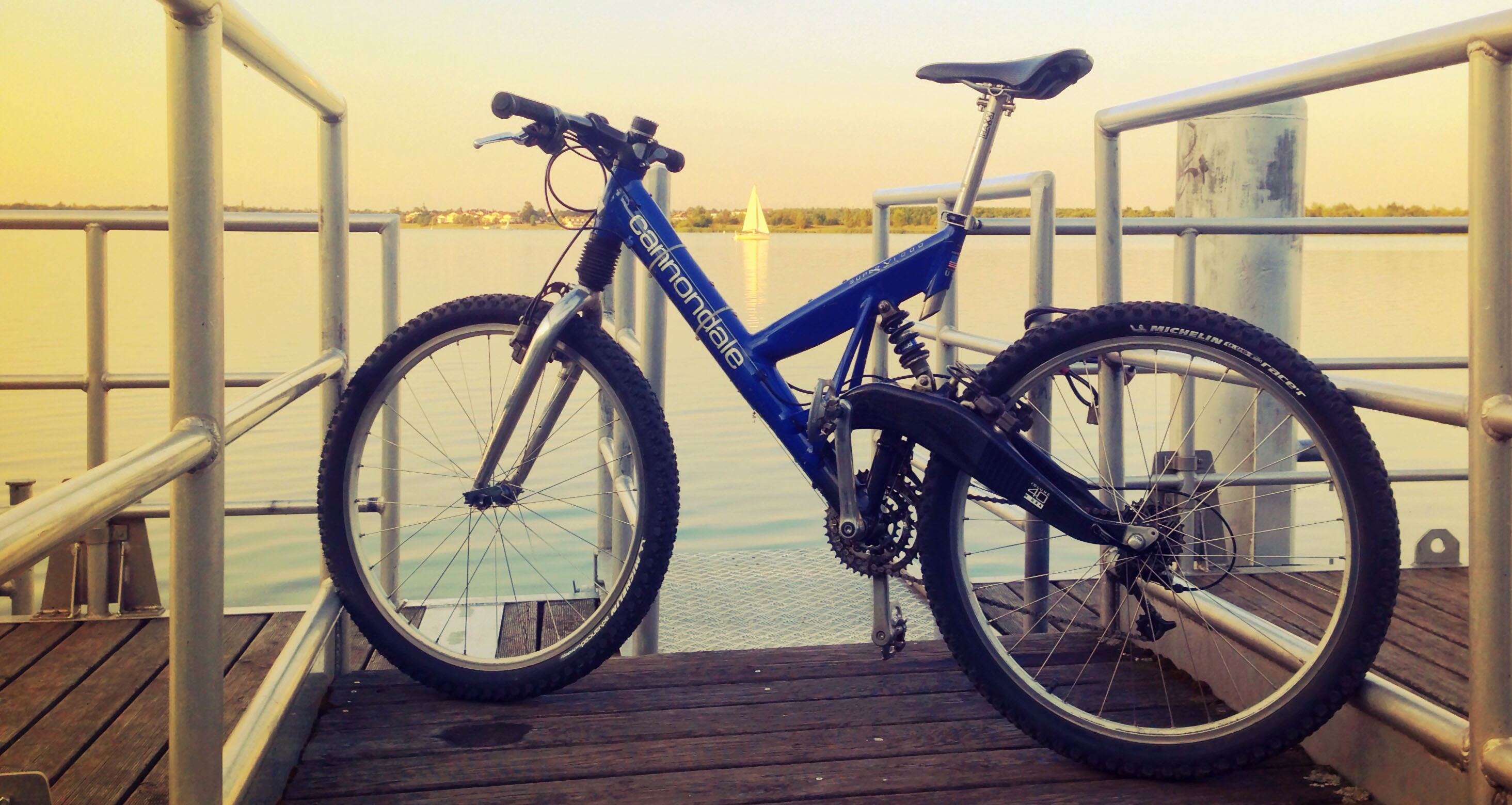 Cannondale V 1000 Mountainbike