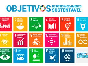 Alimentação sustentável: uma abordagem holística
