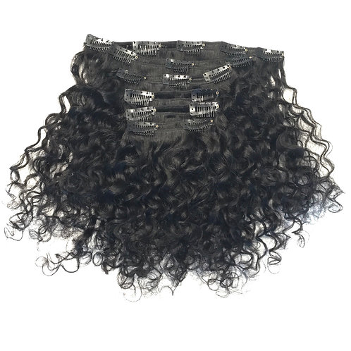 Raw Indian Curly Clip-Ins