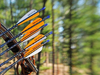 00-Hero-Hunting-Arrows-101-Photo-Credit-John-Hafner-800x600.jpg