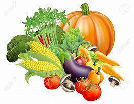 Harvest vegetables.jpg