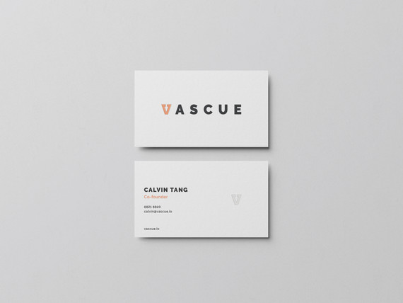 VASCUE - MED TECH STARTUP BRANDING