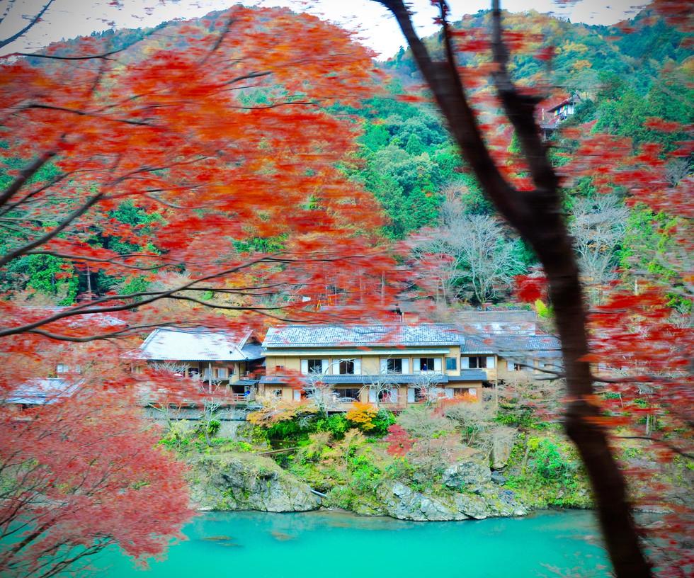 Arashiyama, 2015