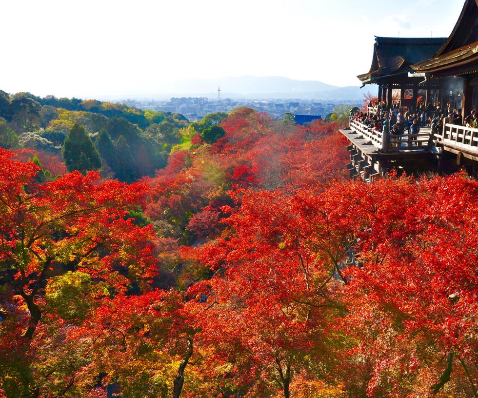 Kiyomizu-dera, Kyoto, 2015