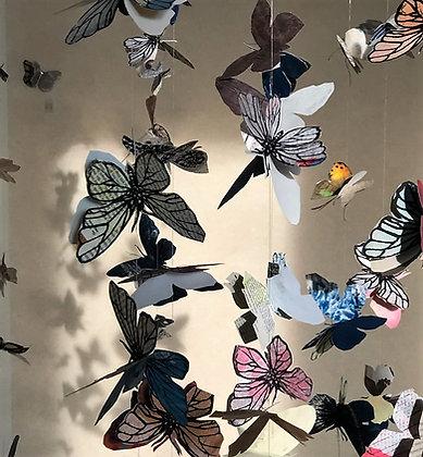 365 Butterflies