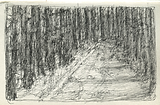 winterroad 2.tiff