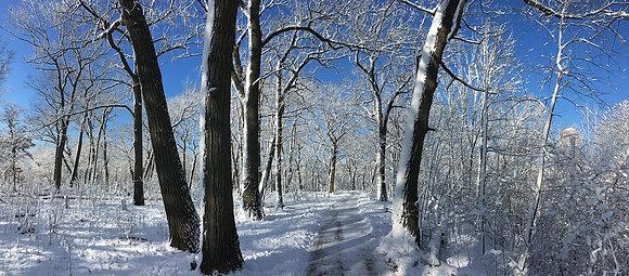 Riverside Park Winter Panorama