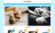 website design sample 10