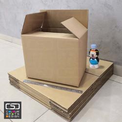 CBX253122_A4_boxs