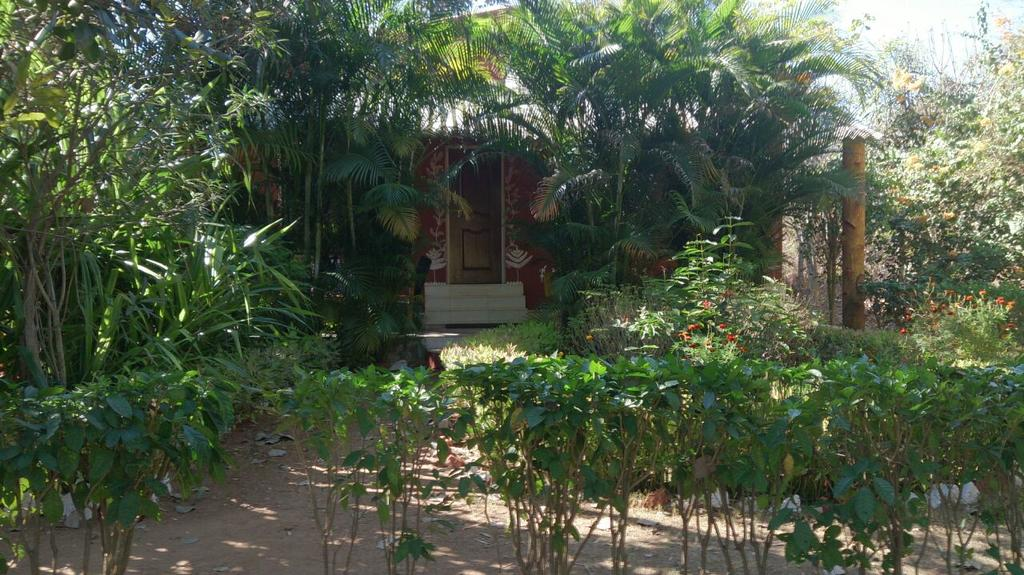 Double Room with Garden View 5