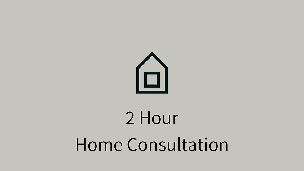 2 Hour Home Consultation + 3 weeks support