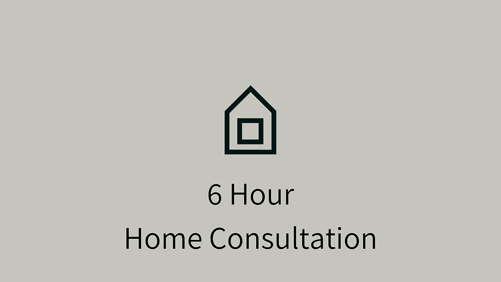6 Hour Home Consultation