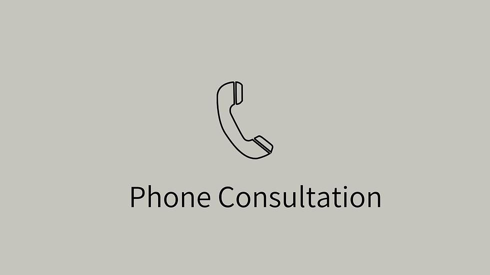 Phone Consultation + 3 weeks support