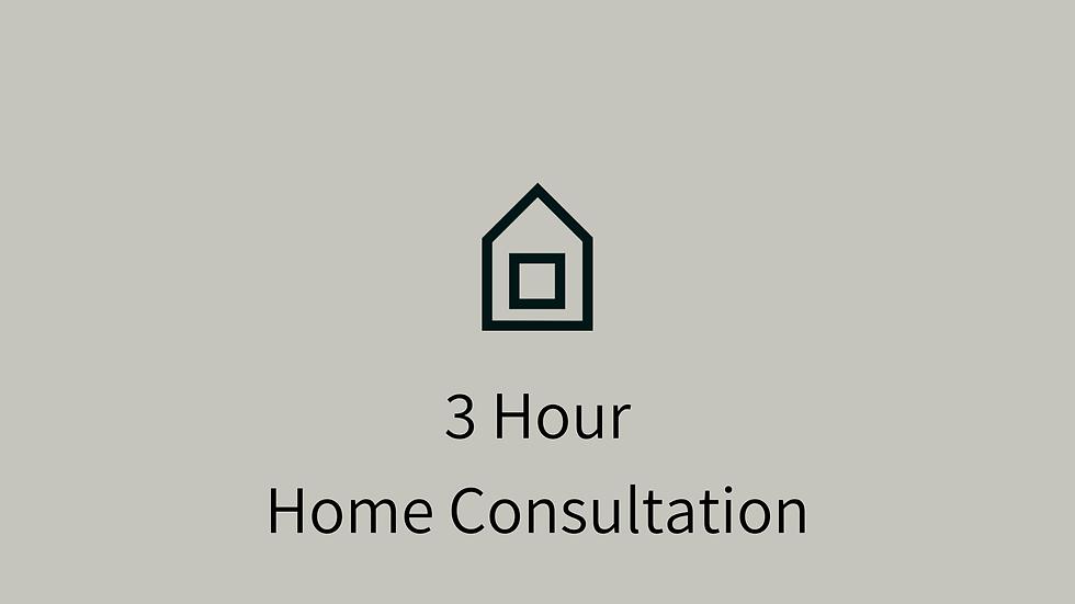 3 Hour Home Consultation (5pm - 8pm)