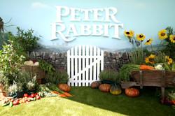 PeterRabbit953.jpg