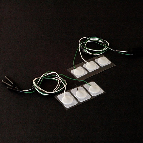 Electrodes with lead wires attached - Order No. 3PT3-6