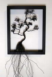 Framed Bonsaï I