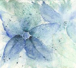 Remembering Winter Poinsettias