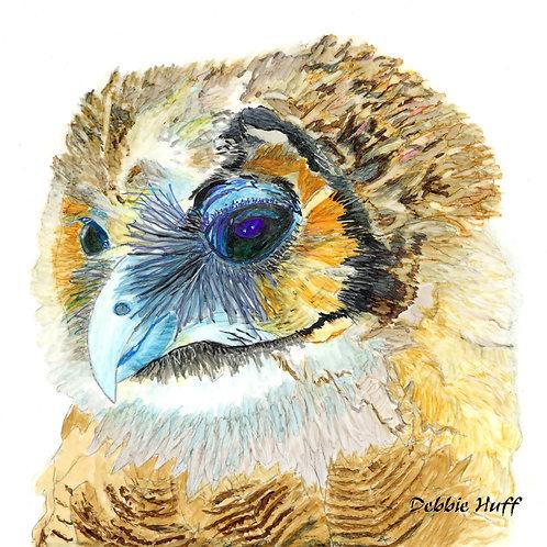 Sleepy Owl-Fine Art